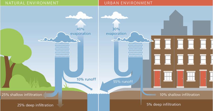 stormwater diagram